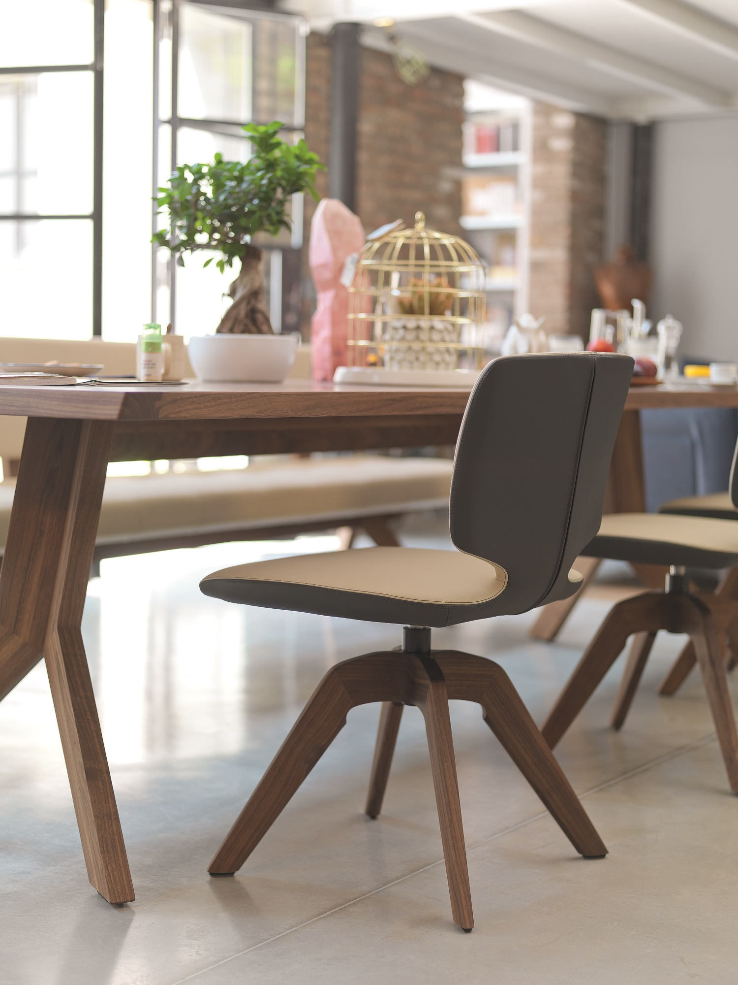 Tisch yps biom bel bonn - Tisch mit stuhle ...